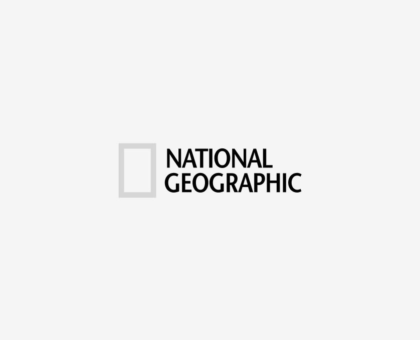 logotype-national-geographic